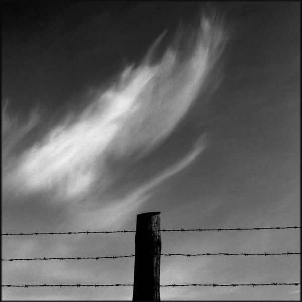 Cloud and Barbed Wire, Stutthof, 2003