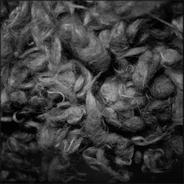 Victims' Hair, Auschwitz, 2001